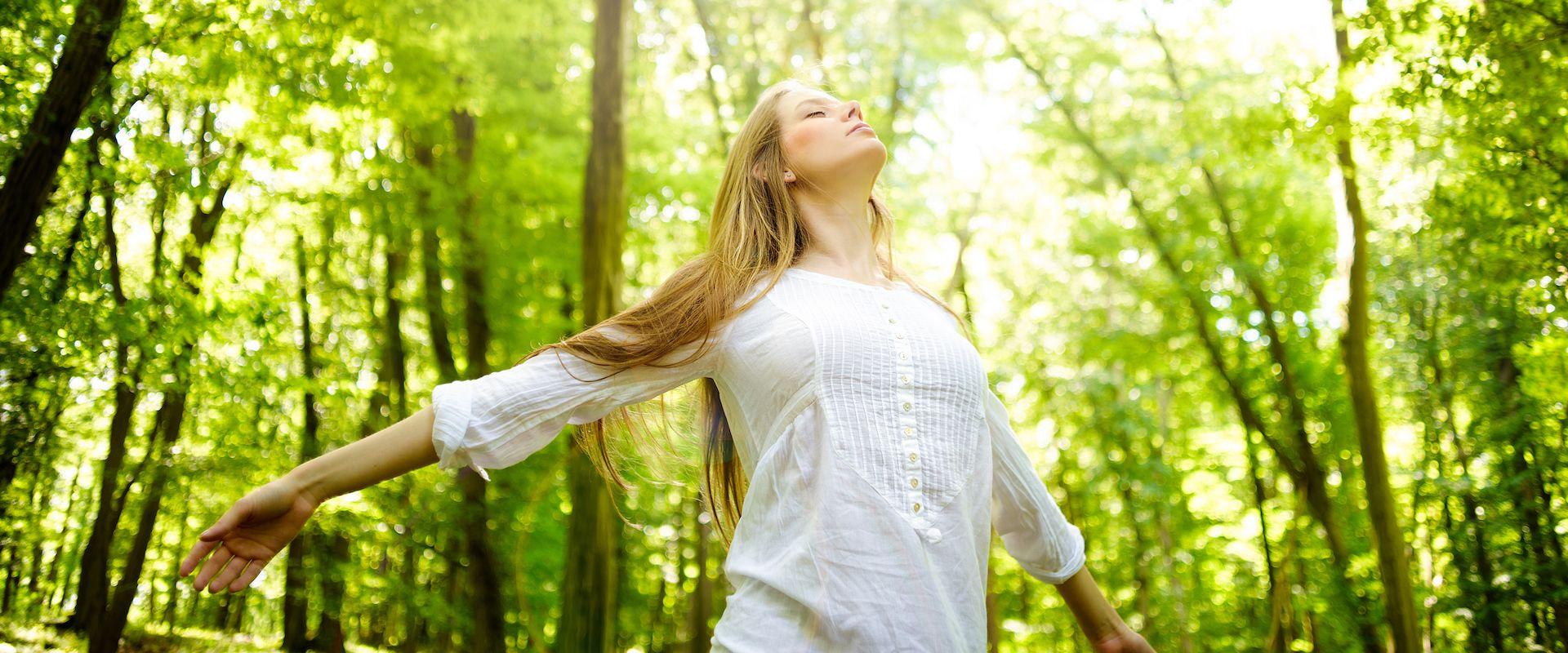Retiros saludables en la naturaleza