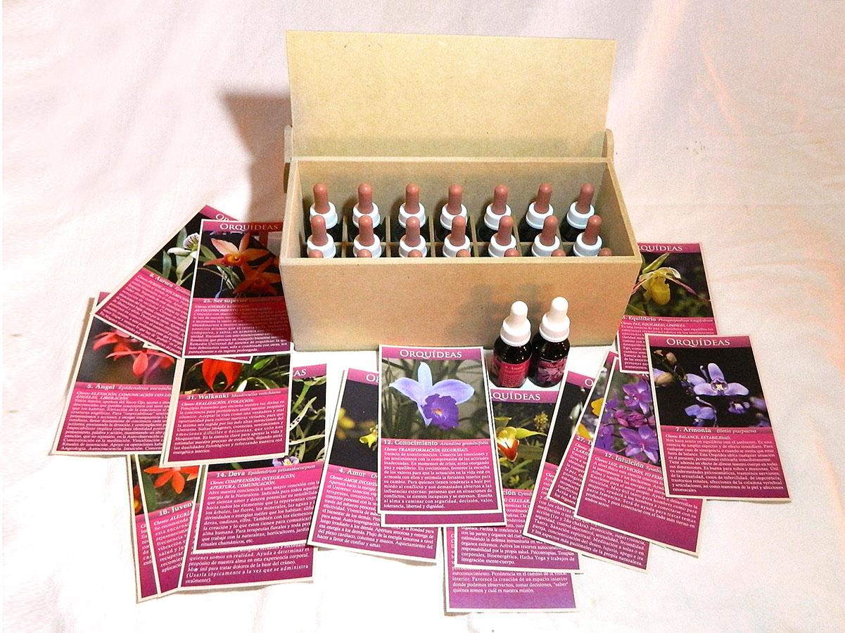 Set del Sistema Floral de Orquídeas